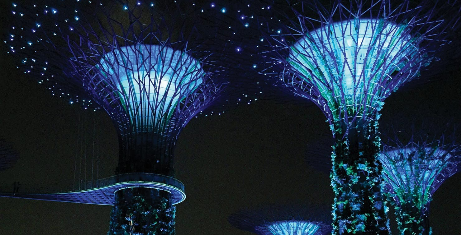 Gardens by the Bay Singapore by Florence Li